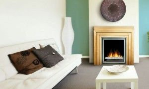 Napoleon EF30G Electric Fireplace