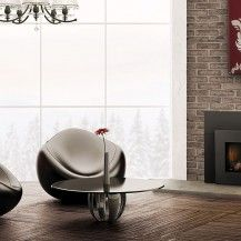 Napolean Inserts Fireplace
