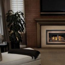 Napoleon GDIZC Gas Fireplace