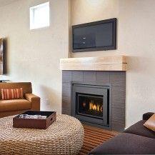 Regency Inserts Fireplace 5