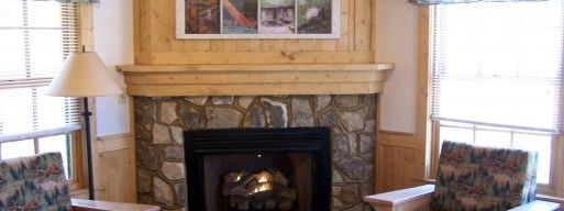 Different Types Of Gas Fireplaces In Ottawa The Burning Log