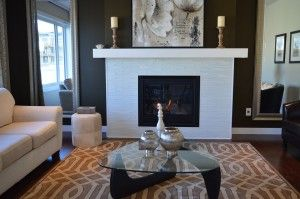 Choosing an insert for a gas fireplace in Ottawa gives you a wide variety of options.