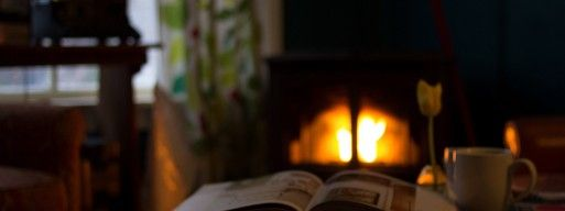 Read our maintenance tips for your wood and gas fireplace before the winter.