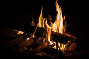 close up photo of wood burning